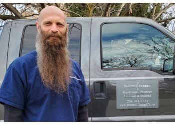 Boise City handyman Bearded Hammer