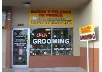 Hialeah pet grooming Beautiful Puppy, INC.