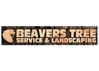 Cary tree service Beavers Tree Service & Landscaping