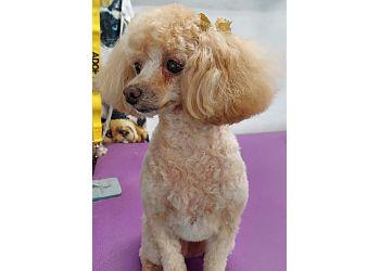 New Orleans pet grooming Bel Air Pet Care