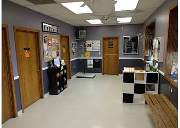 3 Best Veterinary Clinics in Lincoln, NE - Expert ...
