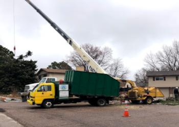 Colorado Springs tree service Beloved Earth LLC