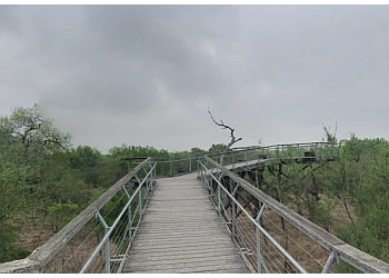 McAllen hiking trail BENTSEN-RIO GRANDE VALLEY STATE PARK