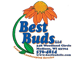 Madison lawn care service Best Buds Landscaping & Greenhouse LLC