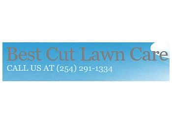 Killeen lawn care service Best Cut Lawn Care