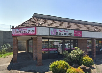 Bellevue pet grooming Best Friends Grooming Salon