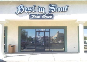 Las Vegas pet grooming Best In Show