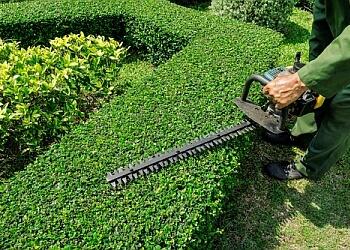 San Bernardino lawn care service Best Lawn Care