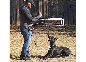 Fayetteville dog training Beyond Basic Dog Training