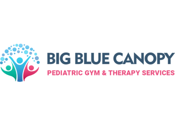 Cincinnati occupational therapist Big Blue Canopy