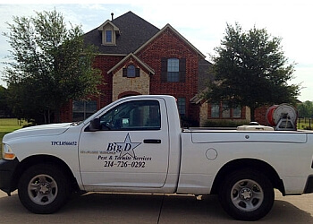 McKinney pest control company Big D Pest and Termite Services