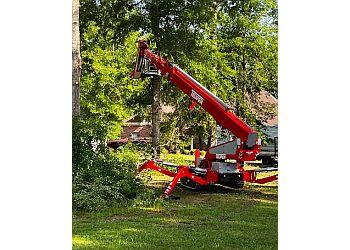 Jackson tree service Big John's Tree Service, LLC