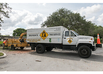 Miami tree service Big Ron's Tree Service LLC.