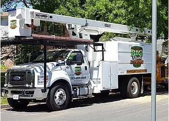 Alexandria tree service Big Steve's Tree Care