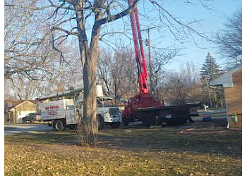 Toledo tree service Big Swing Tree Service LLC