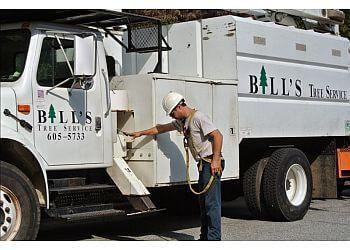 Greensboro tree service Bill's Tree Service, Inc.