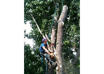 Lafayette tree service Billy Broussard Tree Services
