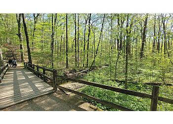 Columbus hiking trail Blendon Woods Metro Park