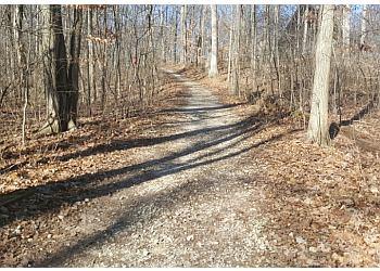 Columbus hiking trail Blendon Woods Metro Park Trail
