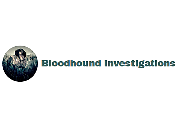 Memphis private investigation service  Bloodhound Investigations
