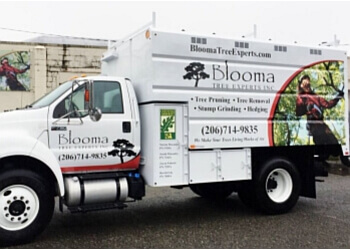 Seattle tree service Blooma Tree Experts Inc