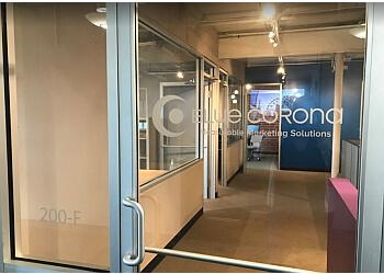 Charlotte web designer Blue Corona
