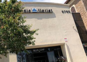 Rancho Cucamonga florist Blue Leaf Studio Florist