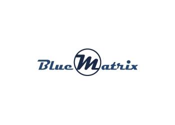 Frisco web designer BlueMatrix Media