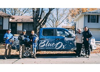 Lincoln tree service Blue Ox Tree Service