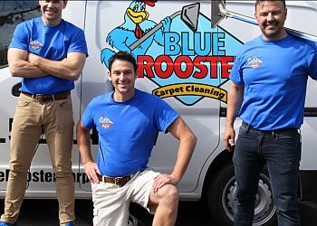 Glendale carpet cleaner Blue Rooster Carpet Cleaning