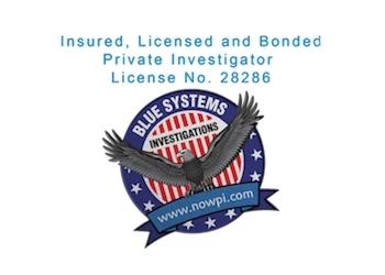 Irvine private investigation service  Blue Systems International