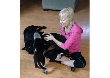 Overland Park dog walker Blue Valley Pet Care