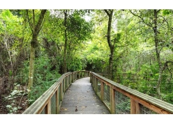 Baton Rouge hiking trail Bluebonnet Swamp Nature Center