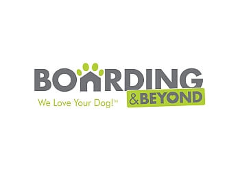 Boarding & Beyond