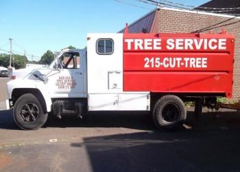 Philadelphia tree service Bob Koch 215-Cut-Tree