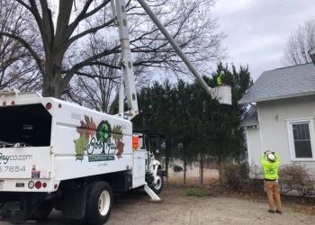 Louisville tree service Bob Ray Co. Inc.