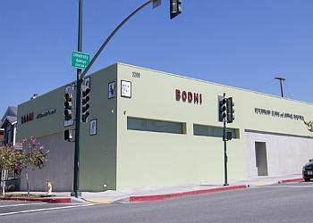 San Diego veterinary clinic Bodhi Animal Hospital