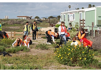 Huntington Beach places to see Bolsa Chica Conservancy
