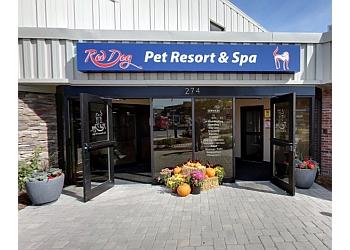 Boston pet grooming Red Dog Pet Resort & Spa