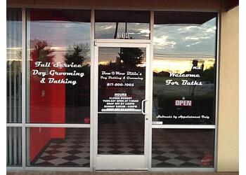 Arlington pet grooming Bow Wow Billie's