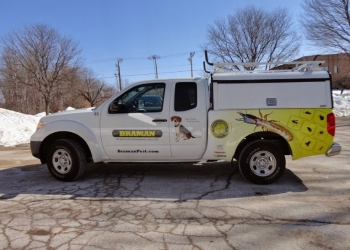 Hartford pest control company Braman Termite & Pest Elimination