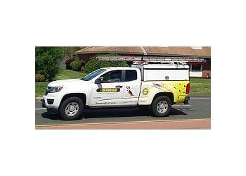 Springfield pest control company Braman Termite & Pest Elimination