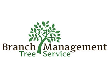 Scottsdale tree service Branch Management Tree Services