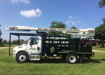 Chesapeake tree service Brandon's Tree Service LLC