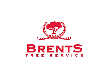 Round Rock tree service Brents Tree Service