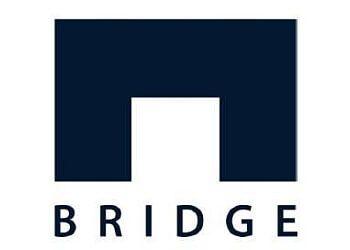 Newark it service Bridge Global Inc.
