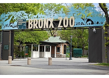 New York places to see Bronx Zoo