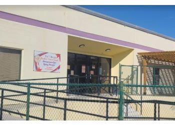 Brownsville veterinary clinic Brownsville Spay/Neuter