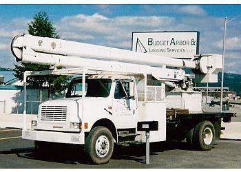 Spokane tree service Budget Arbor & Logging LLC.