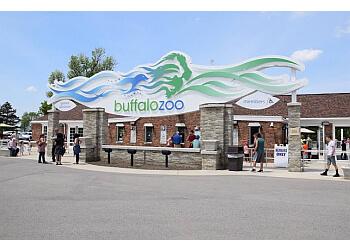 Buffalo places to see Buffalo Zoo